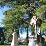 Milledgeville Memory Hill Cemetery