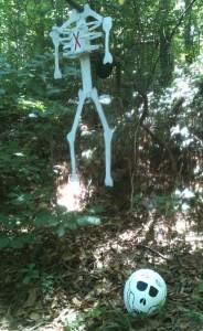 Fake skeleton in woods.