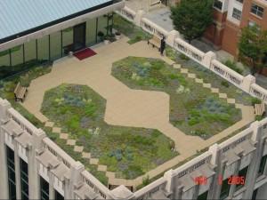 Atlanta City Hall's Green Roof