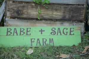Babe + Sage Farm