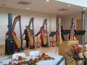 Photo of Urban Youth Harp Ensemble
