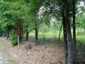 Blackshear Prison Camp in Pierce County