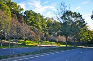 The Perimeter CIDs have added seven miles of sidewalks to establish a walkable community. Credit: Donita Pendered