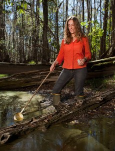 A researcher at the Jones Center, sampling for mosquito larvae in a forested wetland on Ichauway.