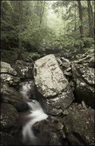 Sutton Gulch Creek in Cloudland Canyon State Park. Photograph by Diane Kirkland (DianeKirklandPhoto.com)