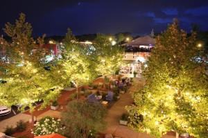 Night view of Woodstock
