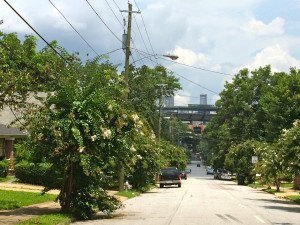 Turner Field is flanked by streets lined with crepe myrtle, such as Crew Street just south of the ballfield. The surrounding neighborhoods have not benefited from the back-to-the-city redevelopment cycle. File/Credit: Donita Pendered