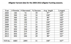 Gator hunting has gained popularity in Georgia, even as gators have become harders for hunters to locate and kill. Click on the chart for a larger version. Credit: Georgia Department of Natural Resources