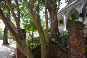 Atlanta's West End neighborhood includes tree-lined streets and well-maintained homes. Credit: Donita Pendered