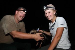 Kaylee Pollander, a UGA graduate student, and Greg Balkcom, a biologist with Georgia DNR, attach a transmitter to a mottled duck. Credit: Robert Horan, Ga. DNR