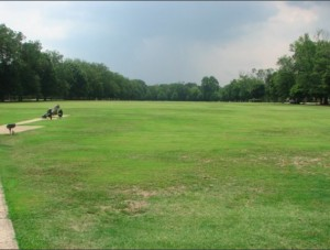 Fort McPherson's green space
