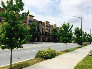 Memorial Drive streetscape