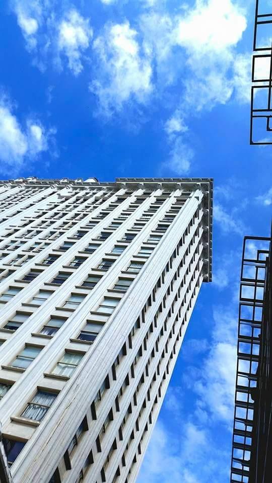 Healy Building by Beth Keller