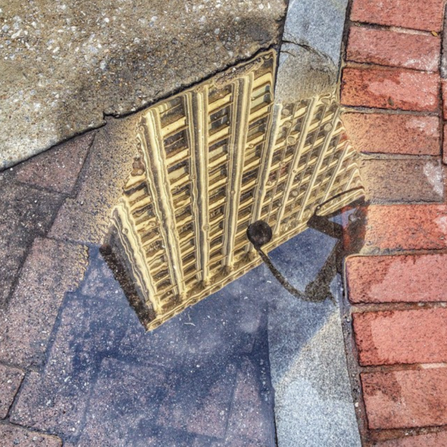 Healey Puddle by Wendy Darling