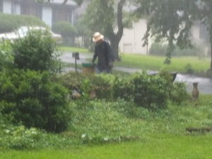 Despite the heavy rain, there was no lightning, so Jim Hiskey kept gardening.