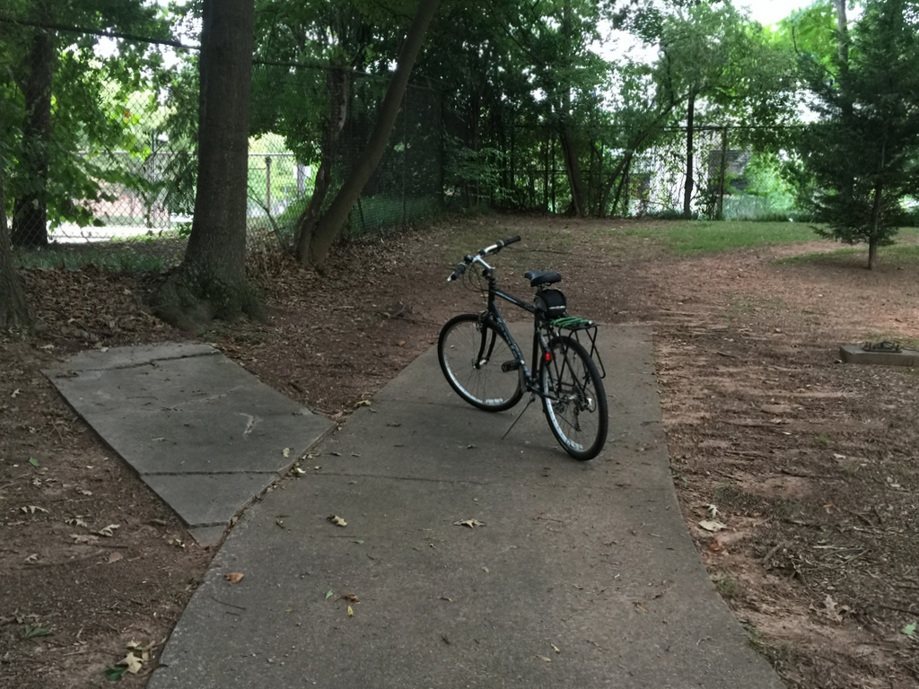 End of the Line by Greg Streib. This is the fence in Iverson Park that blocks pedestrian and bike access to the Candler Park Marta Station