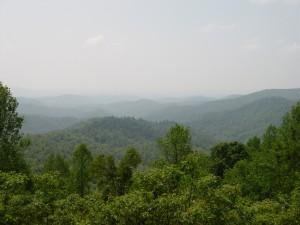 Cohutta Wilderness Area