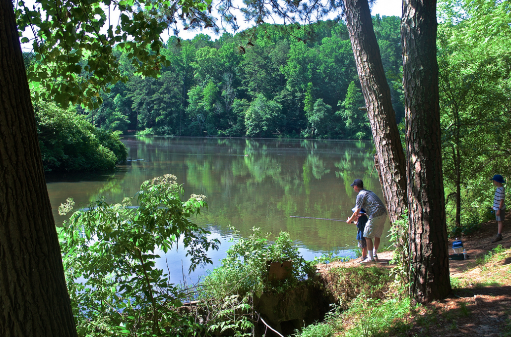 """Taken at Candler Lake in Lullwater Park near Emory around Father's Day of this year, I call this shot """"Dropping a Line"""" for how it portrays this special father-son moment."""