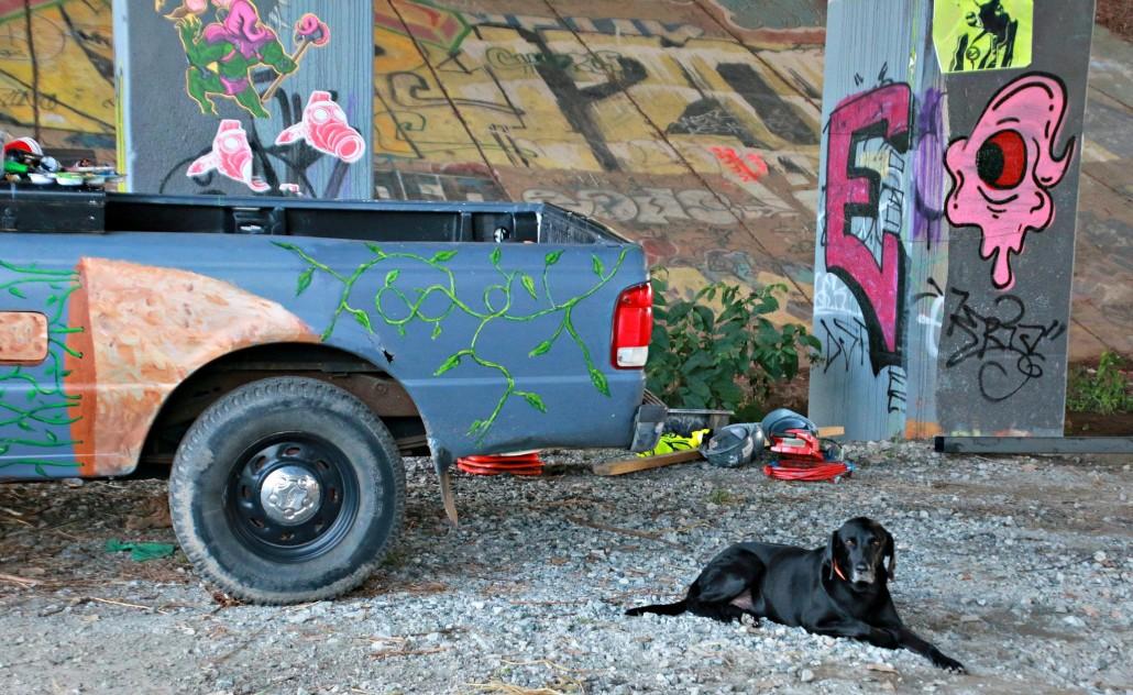 Dog resting on the BeltLine by Lisa Bongiorno