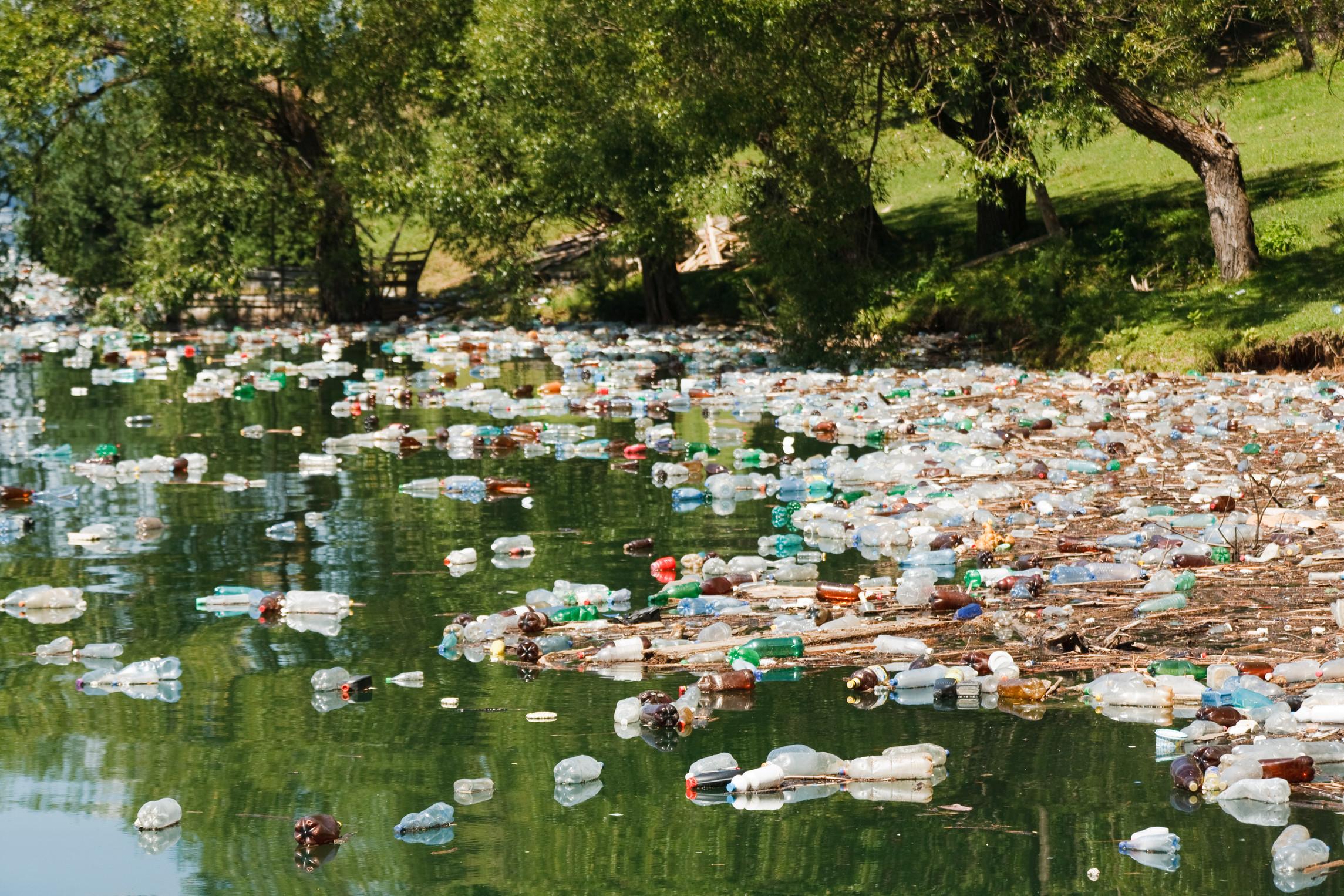 plastic bottles on water