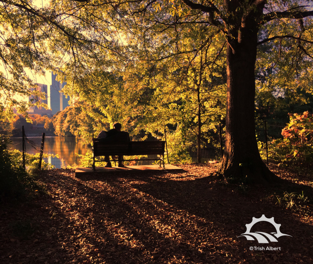 A couple sits on a bench overlooking Lake Clara Meer at Piedmont Park during an autumn sunset. Photo by Trish Albert