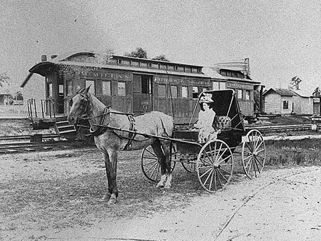 A woman drives a carriage in Lanier County, circa 1900. Courtesy of Georgia Archives, Vanishing Georgia Collection