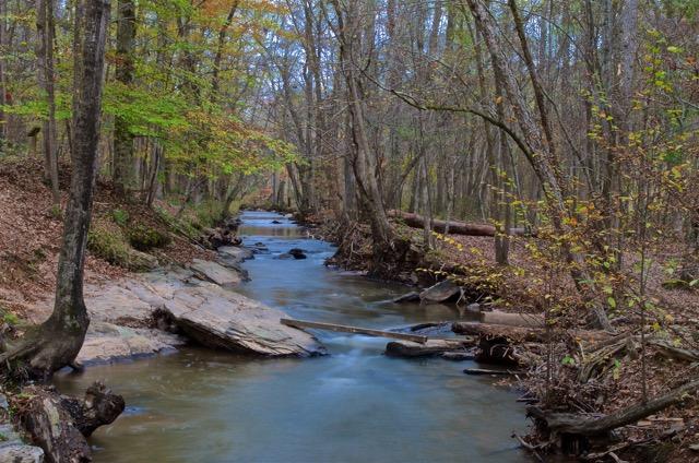 "Improvised ""Footbridge"" Over Peaceful Stream (Sweetwater Creek State Park) by John Becker"