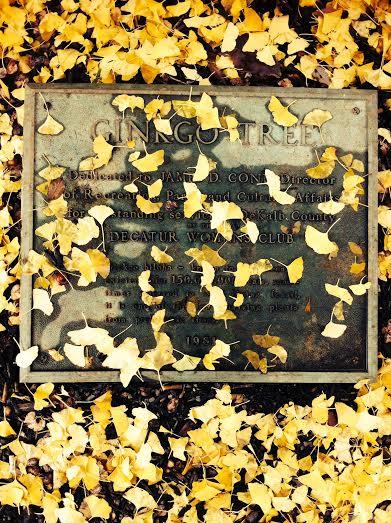 Decatur Square plaque by Kelly Jordan