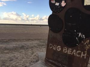 qSan Diego, Dog Beach sign