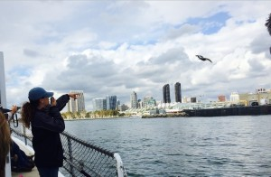Courtney Brezinski, a narrator and deck hand aboard a Maritime Museum boat, dispels myths about San Diego in a tour of the harbor. Credit: David Pendered