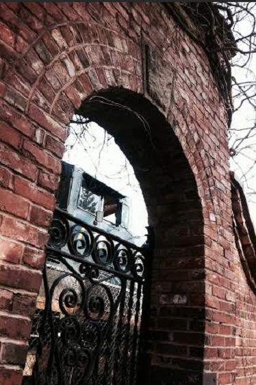 The curly gates by Kelly Jordan