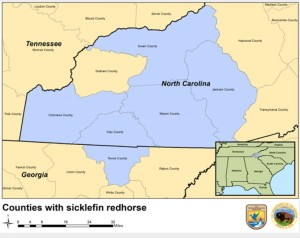 Sicklefin redhorse map