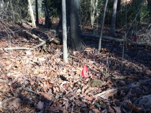 Atlanta has purchased land for a park near a trail head of PATH400, near a historic cemetery where graves were marked in January 2014. Credit: David Pendered