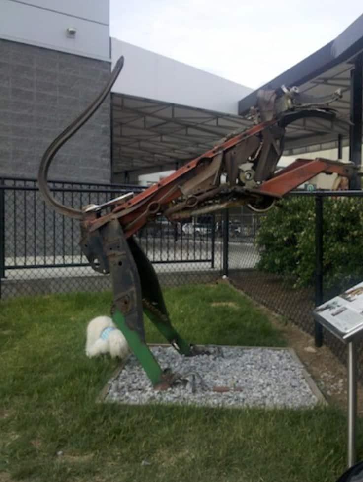 ATL airport dog park