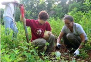 Georgia Plant Conservation Alliance, prarie area