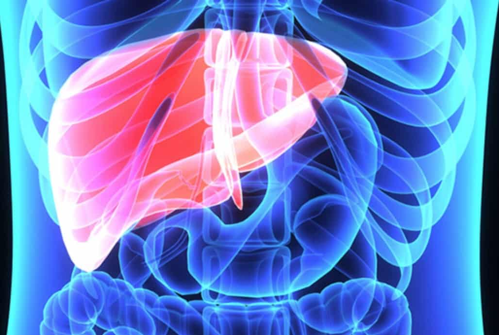 Emory liver
