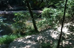 South Fork Conservancy has led a volunteer effort that has cleared nearly 3 miles of trails and more than 100 acres of land along the North and South Forks of Peachtree Creek. The trails include this one, Confluence Trail, which will connect with Buckhead. Credit: David Pendered