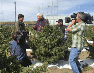 "Dr. John LaPook of ""60 Minutes"" interviews Marijuana Entrepreneurs in Colorado"