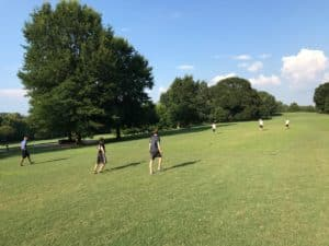piedmont grass, sports