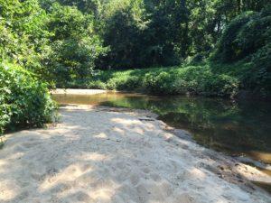 peachtree creek, sandy banks