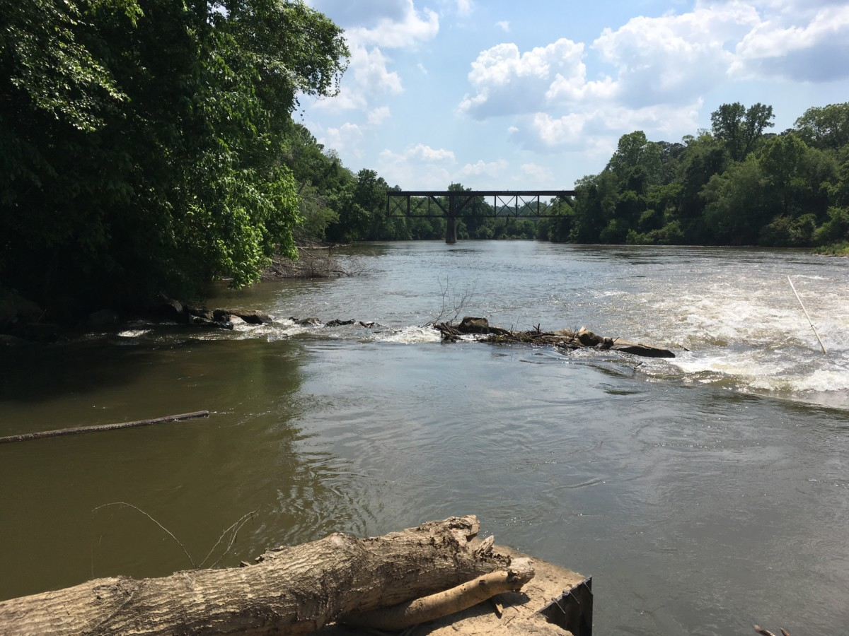 Standing Peachtree Park, at Atlanta's public water intake, is one of the few places in Atlanta where it's possible to get a look at the Chattahoochee River. Credit: Maggie Lee