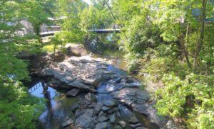 proctor creek greenway, 2