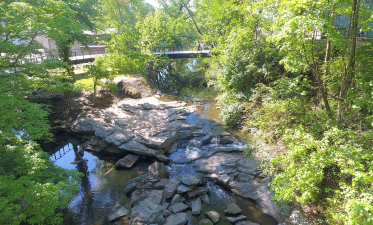 proctor creek greenway, 2