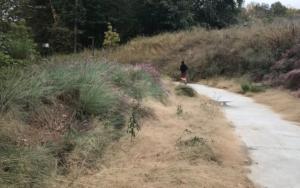 Atlanta BeltLine, jogger, westside