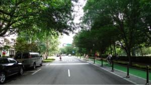 Spring Street after