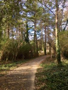 henderson park, nature trail
