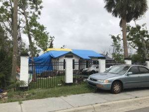 Hurricane Michael, blue tarps