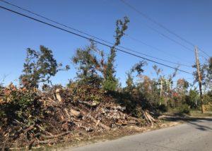 Lynn Haven, debris