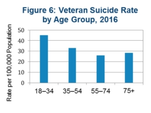 Shepherd Center, suicide rate by age