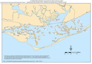 apalachicola bay, oyster beds